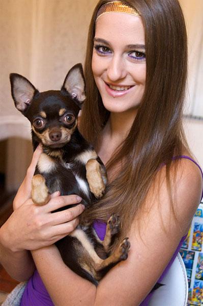 Я и моя собака чихуахуа