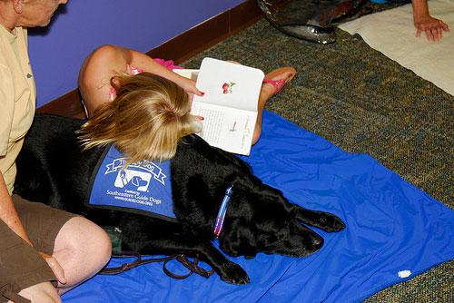 Лечение при помощи собак